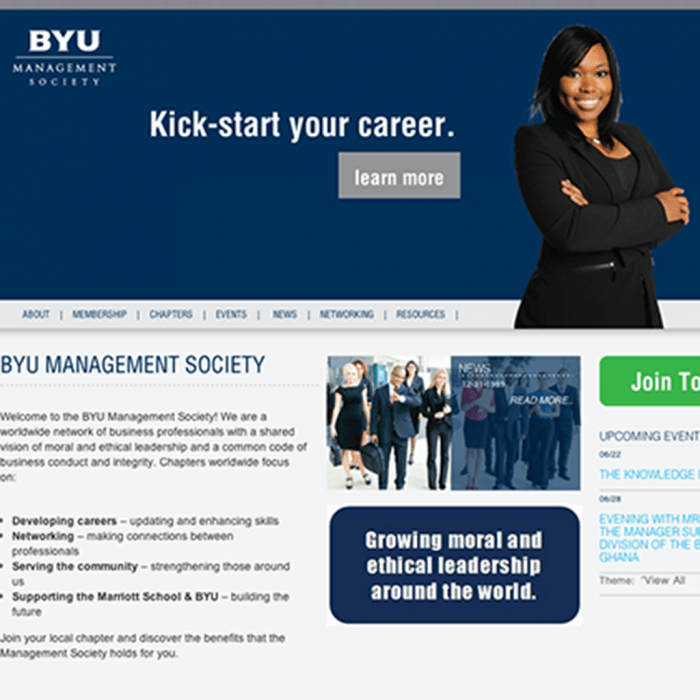 BYU Management Society - Why do websites fail?
